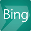 ICO page bing